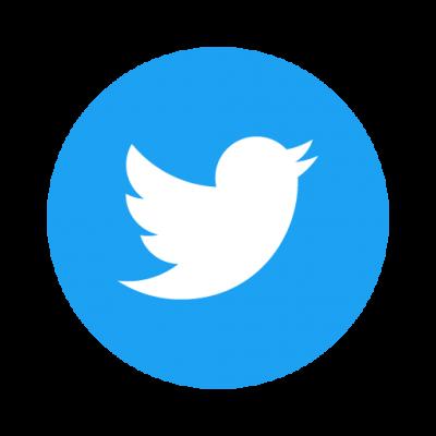 Twitter Social Icon Circle vector
